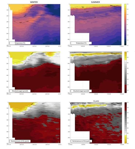 创新试验方法:Pro-Oceanus MiniCO2集成在SeaExplorer 水下滑翔机上跟踪气候变化(图1)